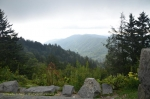 Newfound Gap view 1.JPG